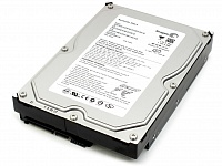 Seagate 250Gb (ST3250318AS)