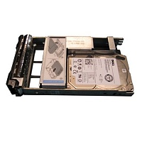 Dell 300GB SAS (400-AJOU)